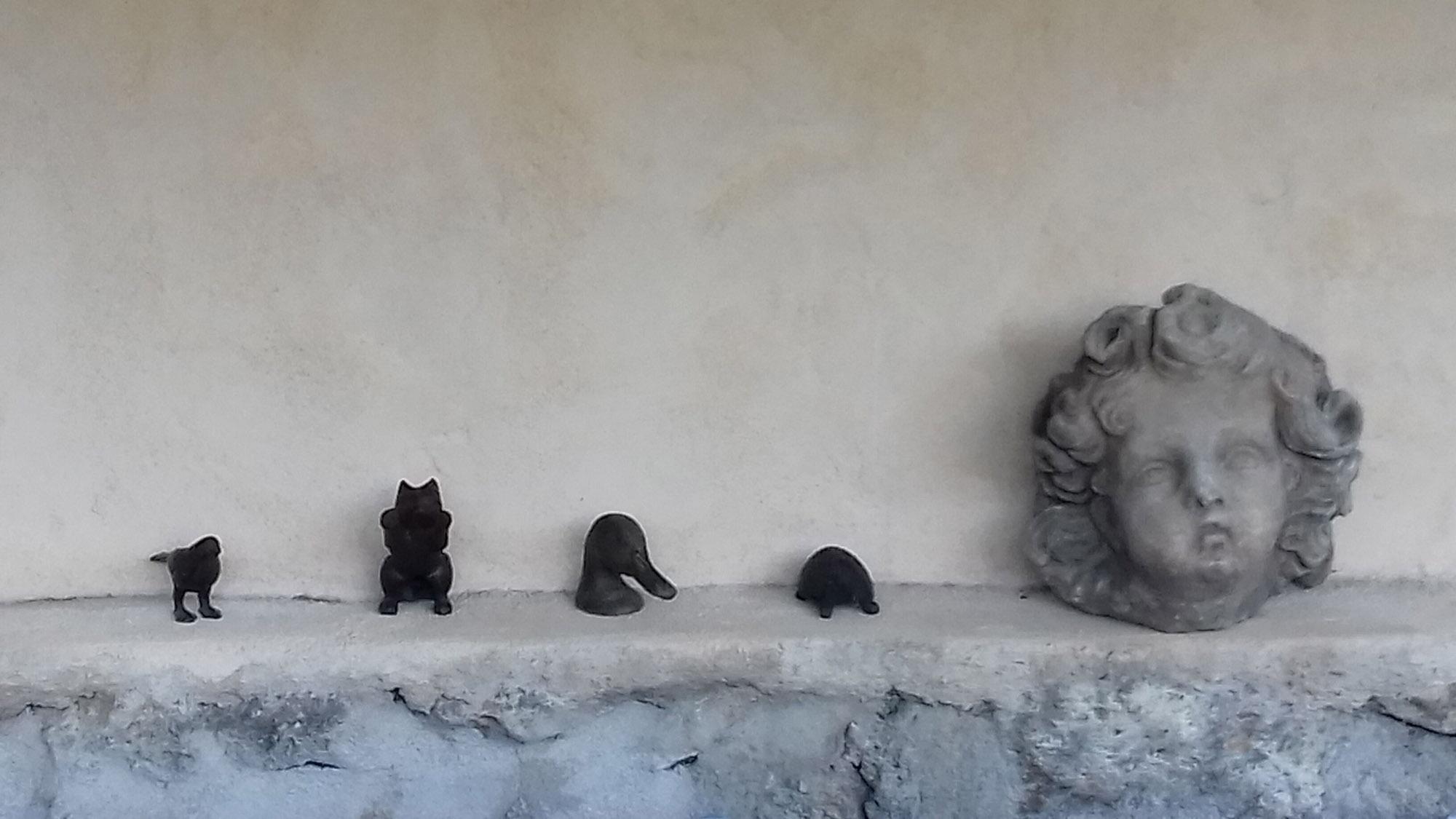 chambres d'hôtes le chat sur le toit (4)
